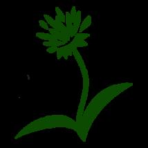 FitoHUM ALLERG - A tündérkert gyöngye