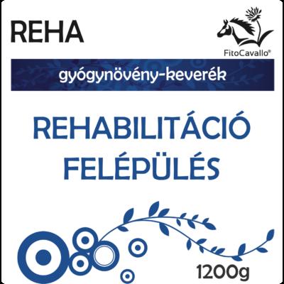 baleseteket és sérüléseket követő rehabilitációs szakasz