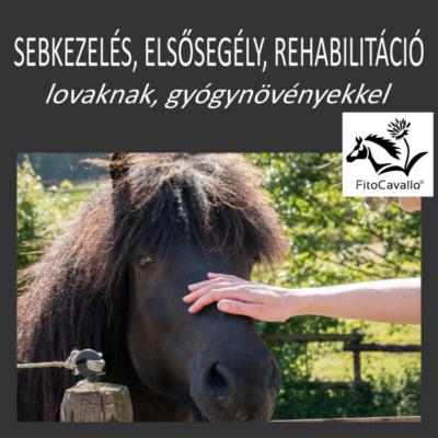 Elsősegély, sebkezelés, rehabilitáció gyógynövényekkel lovaknak LETÖLTHETŐ