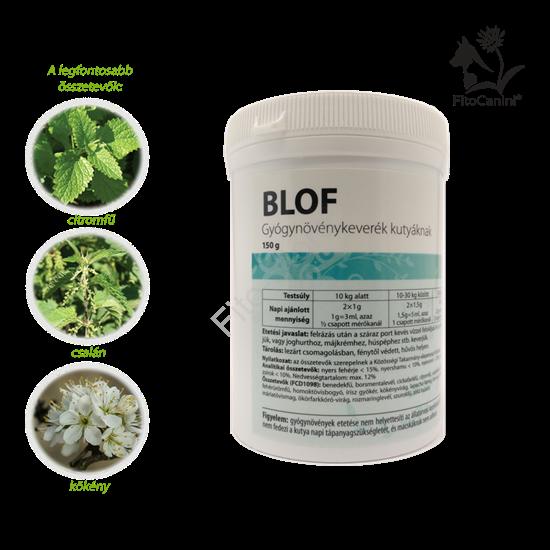 szájszag, fogkő, repedező karmok, száraz, dehidratált bőr, sprőd szőrzet és erős szőrhullás ellen etess te is gyógynövényeket a kutyáddal!